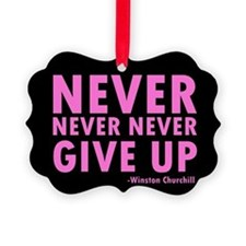NeverGiveUp9.png Picture Ornament