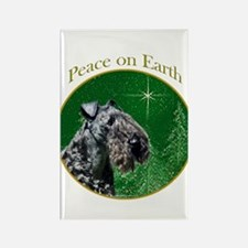 Kerry Peace Rectangle Magnet