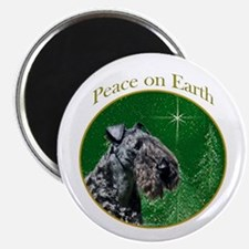 Kerry Peace Magnet