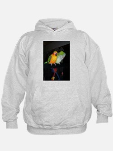 Funny Sun conure parrots Hoodie