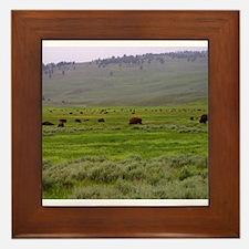 yellowstone national park Framed Tile
