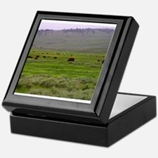 yellowstone national park Keepsake Box