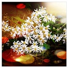 White Mystical Wildflowers Poster