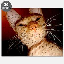 sphynx Puzzle