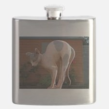 sphynx stretching Flask