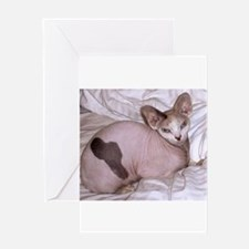 sphynx laying Greeting Cards