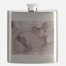sphynx laying Flask