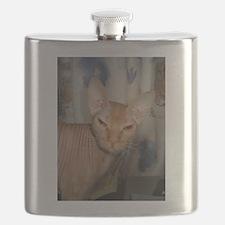 sphynx 2 Flask