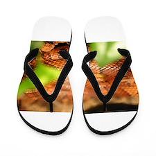 sunkissed corn snake Flip Flops