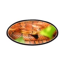 sunkissed corn snake Patch