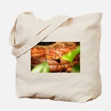 sunkissed corn snake Tote Bag