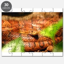sunkissed corn snake Puzzle