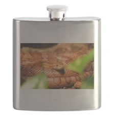 sunkissed corn snake Flask