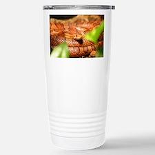 sunkissed corn snake Travel Mug