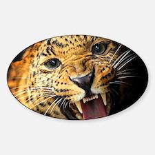 Leopard Portrait Decal
