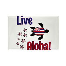 Live Aloha! Hawaii Rectangle Magnet (10 Magnets