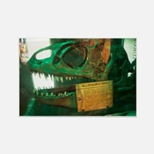 Allosaurus Skull Rectangle Magnet
