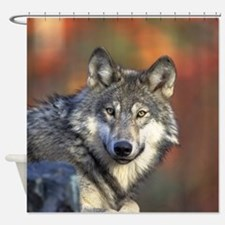 Wolf 022 Shower Curtain