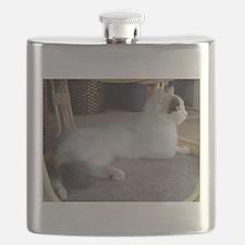 turkish van laying Flask