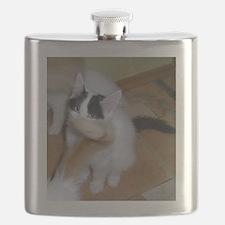 turkish van silly Flask