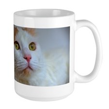 turkish van 2 Mugs