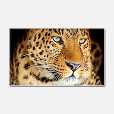 Leopard Portrait Car Magnet 20 x 12