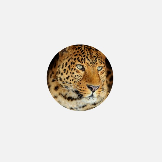 Leopard Portrait Mini Button