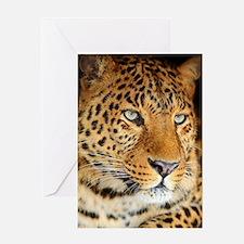 Leopard Portrait Greeting Cards