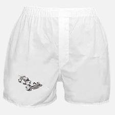 MIP Boxer Shorts