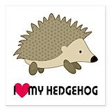 Hedgehog Square Car Magnets