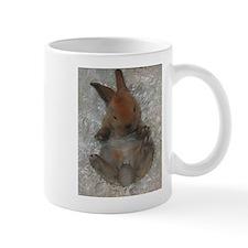 Mini Rex Baby Mugs