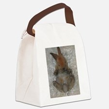 Mini Rex Baby Canvas Lunch Bag