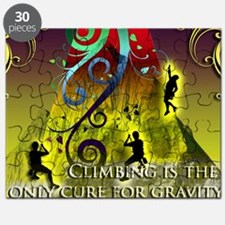 Climbing Cures Gravity Puzzle