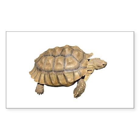 Tortoise Rectangle Sticker