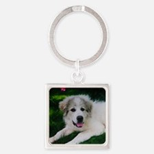 Great pyrenees puppy Square Keychain
