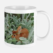 Red Mini Rex Mugs