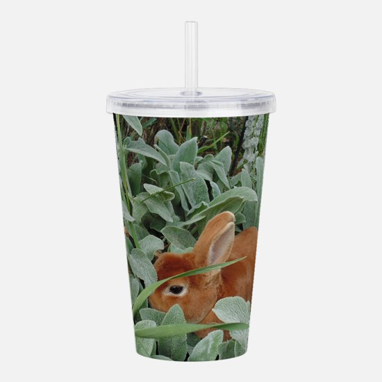 Red Mini Rex Acrylic Double-wall Tumbler