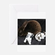 Mama MR & Babies Greeting Cards