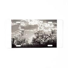 Brush Backlight Southwest Aluminum License Plate