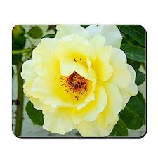 Rose 466-2 Mousepad