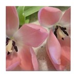 Pink Tulips In Bloom Tile Coaster