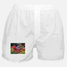 Flowers, Anchorage, Alaska, USA Boxer Shorts