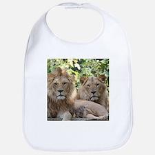 Lion20150801 Bib