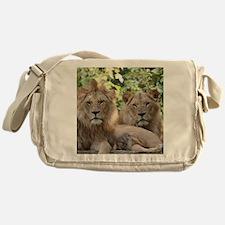 Lion20150801 Messenger Bag