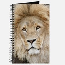 Lion20150802 Journal