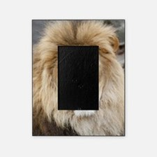 Lion20150802 Picture Frame