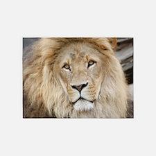 Lion20150802 5'x7'Area Rug