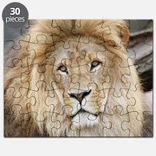 Lion20150802 Puzzle