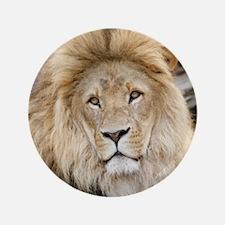 Lion20150802 Button