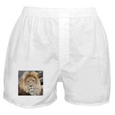 Lion20150802 Boxer Shorts